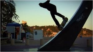 A Skate Regeneration